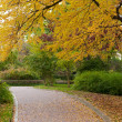 Alleyway with paved road to autumn park — Stock Photo