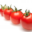 Tomatoes in row — Stock Photo