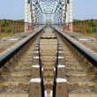 Railway bridge — Stock Photo #6196561