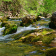 Mountain river — Stock Photo #6196815