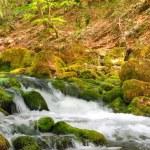 Mountain river — Stock Photo #6196827