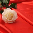 Rose on satin — Stock Photo #6197075
