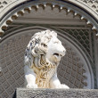 Sculpture of a lion — Lizenzfreies Foto