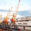 Stock Photo: Seaport and tower cranes
