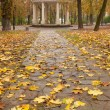 Autumn park with a footpath to summer house - Lizenzfreies Foto