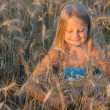 The girl in filed wheats. — Stock Photo