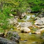Mountain river — Stock Photo #6198610