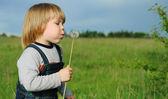Bir çocuk ve bir karahindiba — Stok fotoğraf