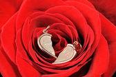 Oro corazón roto en una rosa roja — Foto de Stock