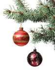 Christmas toy on a branch of a fur-tree — Stock Photo
