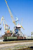 Crane and train — Stock Photo