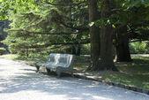 Osamělý lavička — Stock fotografie