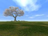 Tree alone — Стоковое фото