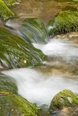 Water cascades of the mountain river — Stock Photo