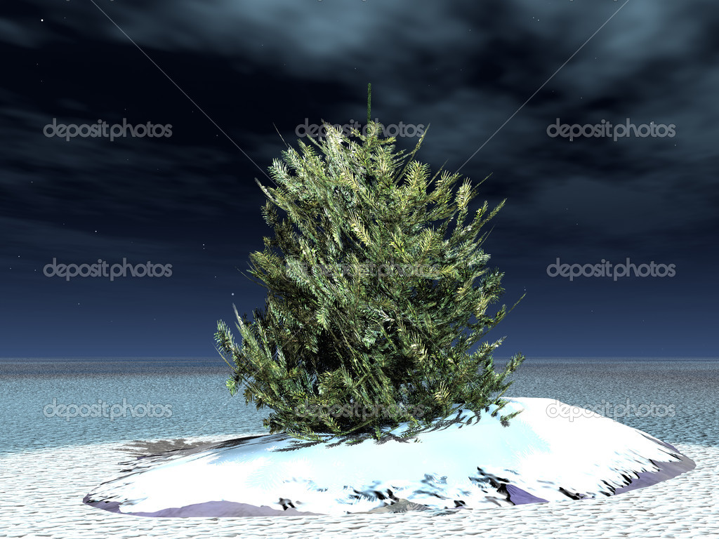 Lonely fur-tree in steppe shined by a moonlight - christmas mood  Stockfoto #6193055