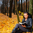 The attractive woman reads the book in autumn forest — Stock Photo