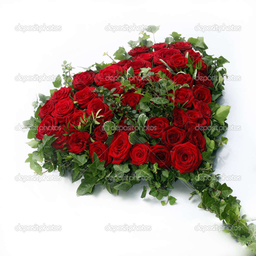 Beautiful heart of red roses surrounded by ivy leaves on a white background - qadratisch - Copy Space    #5872549