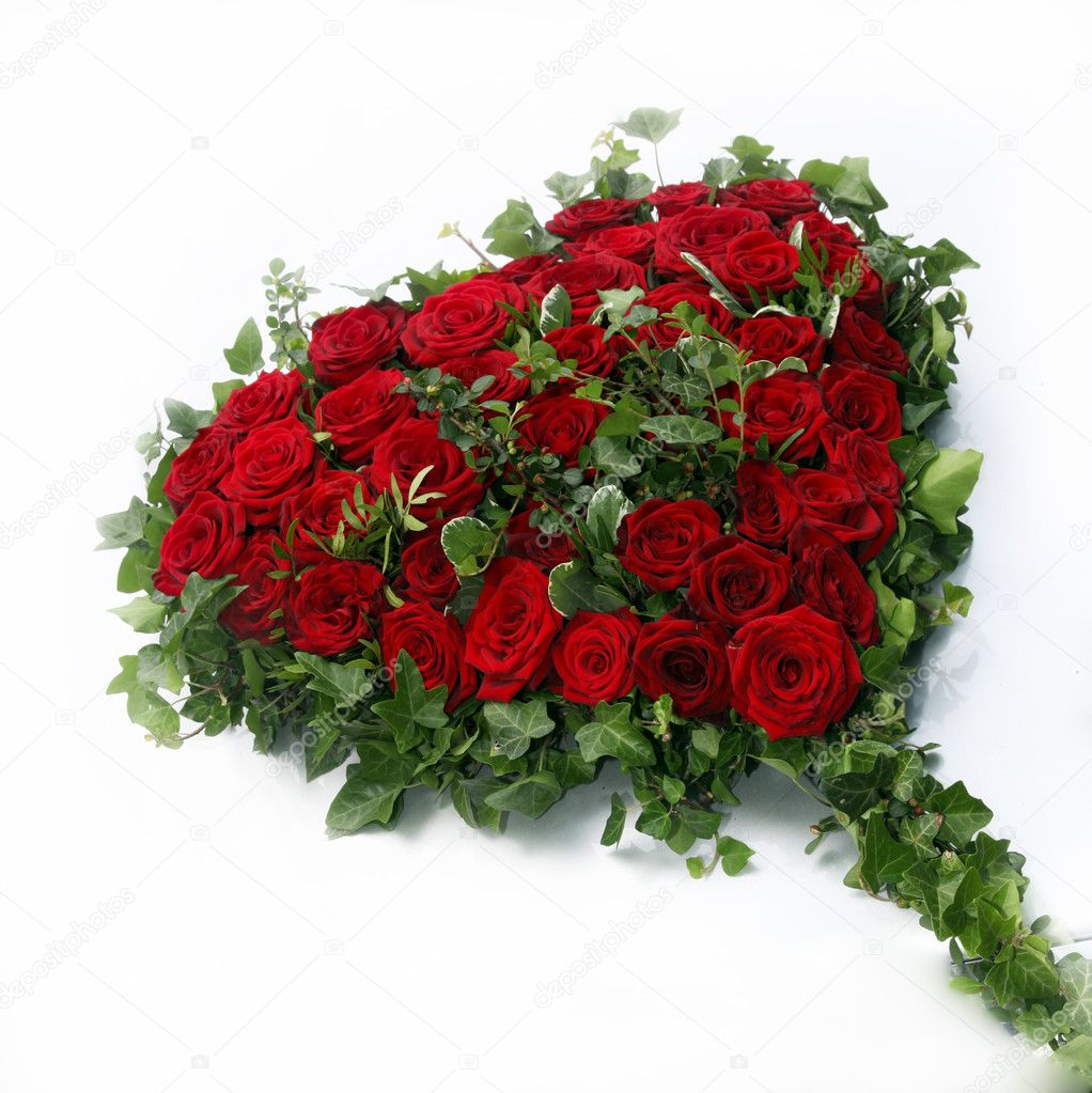 Beautiful heart of red roses surrounded by ivy leaves on a white background - qadratisch - Copy Space — 图库照片 #5872549