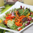 Mixed fresh salad with peppers, lettuce, tomatoes and carrot — Stock Photo