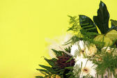 Bouquets of flowers in front of yellow background — Stock Photo