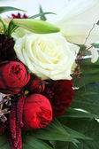 Close-up of white roses and lilies — Stock Photo