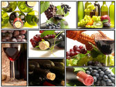 Wine for all tastes — Stock Photo