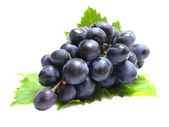 Grape fruit — Stock Photo