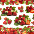 Strawberry fruit — Stock Photo #6610885