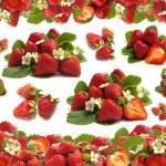 Strawberry fruit — Stock Photo