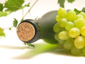 White wine — Stock Photo