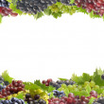 Grape fruit — Stock Photo #6688624