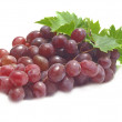 Grape fruit — Stock Photo #6688634