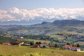View on hills and vineyards of Piedmont, northern Italy. — Стоковое фото