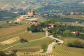 View on hills and vineyards of Piedmont, northern Italy. — Stock Photo