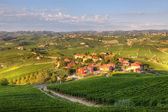 View on vineyards in northern Italy. — Стоковое фото