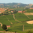 Panoramic view on vineyards and fields in Italy. — Stock Photo