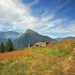 Felder und Wiesen in Alpen — Stockfoto