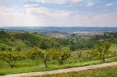 查看上阿尔瓦之间在意大利皮埃蒙特山.` — 图库照片