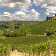 Panoramic view on vineyards and hills in Italy. — Stock Photo #6331931