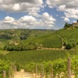 Panoramic view on vineyards and hills in Italy. — Stock Photo