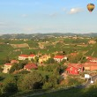 Stock Photo: Air balloon over vineyards in italy.
