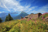 Old house remains in Alps. — Stock Photo