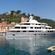 Portofino panoramic view. — Stock Photo