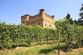 Vinice a hrad grinzane cavour. — Stock fotografie
