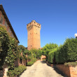 Ancient tower in Santa Vittoria D'Alba, Italy. — Foto de Stock