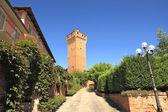 Antiga torre santa Vittoria d'alba, Itália. — Fotografia Stock