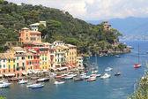 Aerial view on Portofino. — Stock Photo