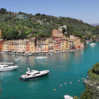 Panorama of Portofino. — Stock Photo