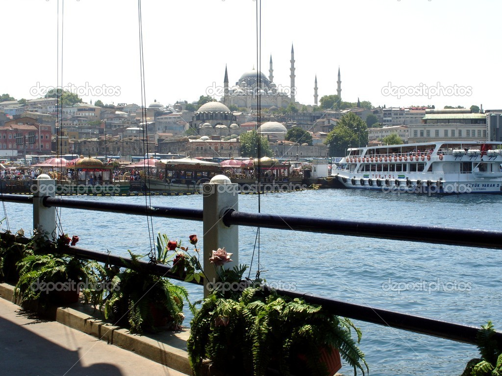 Istanbul, Turkey  Stock Photo #6539012