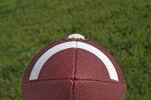 Fútbol sentada sobre la hierba verde — Foto de Stock